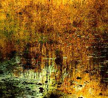 Elizabeth's Lake by Rebelle
