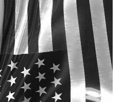Cool American Flag by AustinEmmert