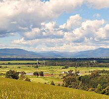 Yarra Valley and Beyond by lilleesa78