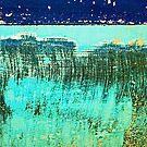 life underwater by Lynne Prestebak