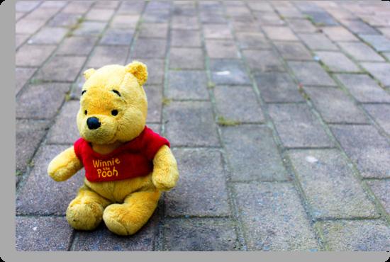 Pooh Bear by Roxanne du Preez