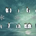 Penquins by Elaine  Manley