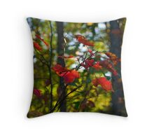 Fall in Southeastern Oklahoma, November 2010 Throw Pillow