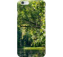 Lazy River iPhone Case/Skin