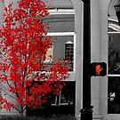 100 Steps to RED by © Joe  Beasley IPA