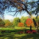 Autumn In A Beautiful Park by kkphoto1