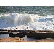 'Da Boyz Watchin' Da Waves' Photographic Print