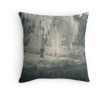 A Moment To Reflect On Throw Pillow