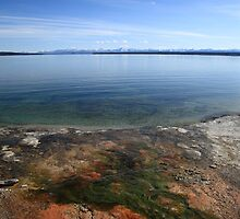 Yellowstone Lake by Frank Romeo