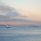 Cruiseship in mist by julie08