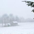 Unadorned Christmas Farmhouse by Gene Walls