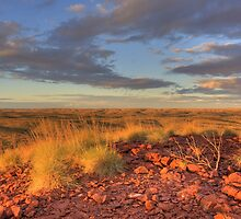Spinifex Crest by Artimagery