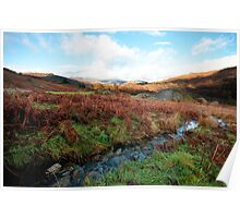 On Loughrigg Fell Poster