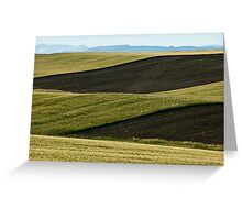 Fileds Of Grain Greeting Card