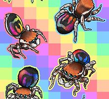 Rainbow Jumping Spider Tiles by RacieB