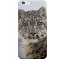 Snow Leopard Sossy iPhone Case/Skin