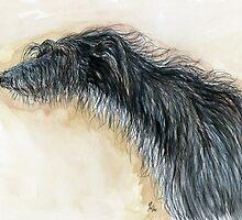 A Little Scruffy Woofy by Elle J Wilson