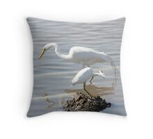 Check it Out Throw Pillow