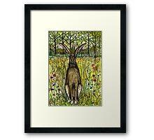 The Evasive Hare Framed Print