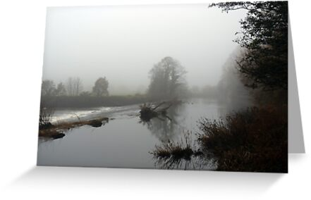 River Mist by Colin Metcalf