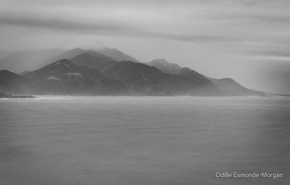 Monochrome Dreaming by Odille Esmonde-Morgan