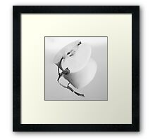 Static Nature with Apple Framed Print