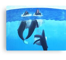 """""""Woopi Whales' Canvas Print"""