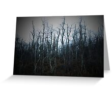 Dying Trees Greeting Card