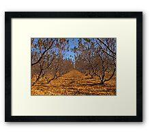 """""""peaches"""" Framed Print"""