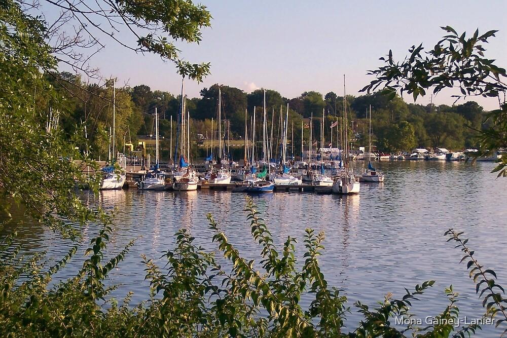 Sailboats on Lake Decatur, Decatur IL by Mona Gainey-Lanier
