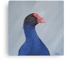 Looking at you - pukeko Canvas Print