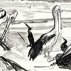 Pelican's Preen 1 by WoolleyWorld
