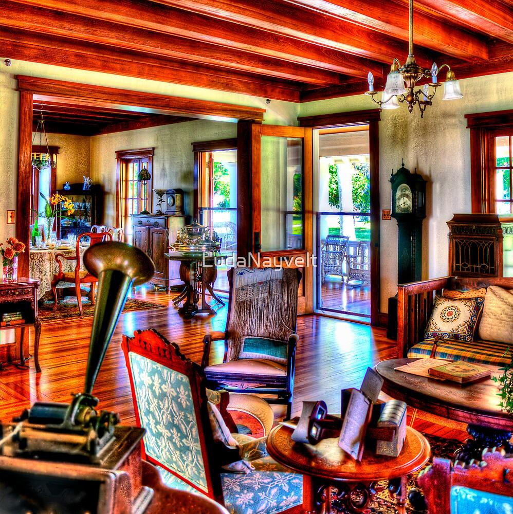 The Thomas Edison & Henry Ford Winter Estates by LudaNayvelt