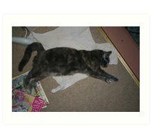 Pinky the Cute Sleeping cat Art Print