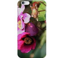 Wild Flowers of the Allegheny Valley iPhone Case/Skin