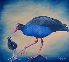 Pukeko and chick by Pam Buffery