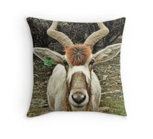 Addax - An Antelope with Style Throw Pillow