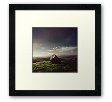 The Resistance Framed Print