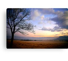 One Frosty Morning, South Africa, Landscape Canvas Print