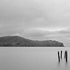 Purau Bay by Rob Dickinson