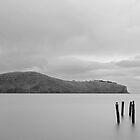 Purau Bay by Rob Dickinson