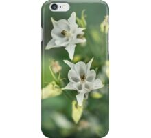 White and pastel yellow columbine flowers iPhone Case/Skin