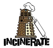 Iskybibblle Products /Dalek Chef Photographic Print