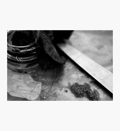 Evidence 3 Photographic Print