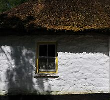 Irish Thatched Cottage by ragman
