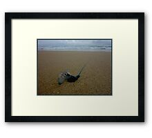The Sting is in The Tail Framed Print