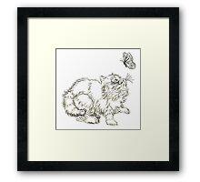 Playful Persian Kitten Framed Print