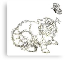 Playful Persian Kitten Canvas Print