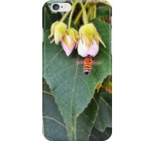 Bee & flower iPhone Case/Skin