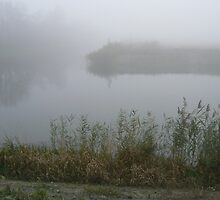 foggy like a painting... by LisaBeth